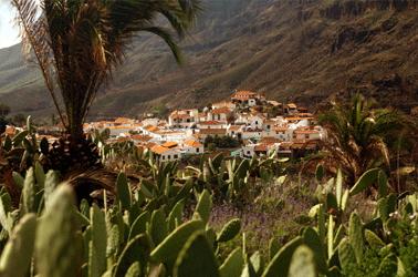 Gran Canaria Natuur